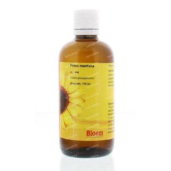Bloem Pinus montana 1D 100 ml
