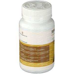 Ayurveda Health Triphala 90 tabletten