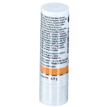 Dr. Hauschka Stick Eclat Des Lèvres 4,9 g