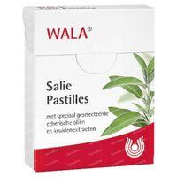 Dr Hauschka Salie Pastilles 35 st
