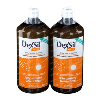 DexSil Forte Articulations DUO 2x1 l