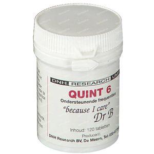 DNH Quint 6 120 tabletten