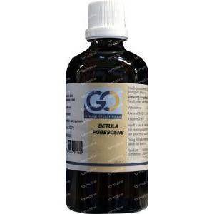 GO Betula pubescens 100 ml