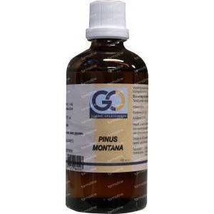 GO Pinus montana 100 ml