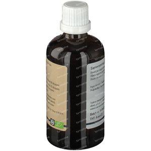 GO Ribes nigrum 100 ml